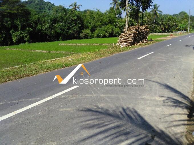 500 Ribu per m² Tanah SHM Sawah Sleman Jogja