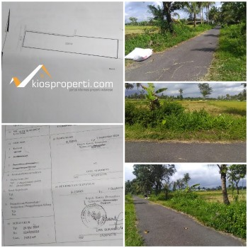 Sawah 900 Ribu Per Meter Dekat Kampus UII & Kawasan Wisata Jogja Eco Park