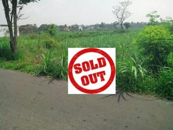 Tanah SHM Sawah 4800 M2 Di Ngaglik Sleman Jl. Raya Besi-Jangkang